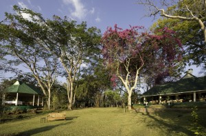ZAMBIA - RIVER CLUB - garden